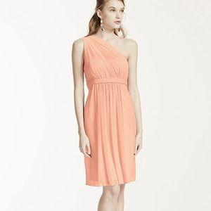 e7771780d47 David s Bridal Dresses - David s bridal bridesmaid dress Bellini size 6